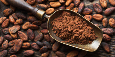 Is cocoa or cacao best?